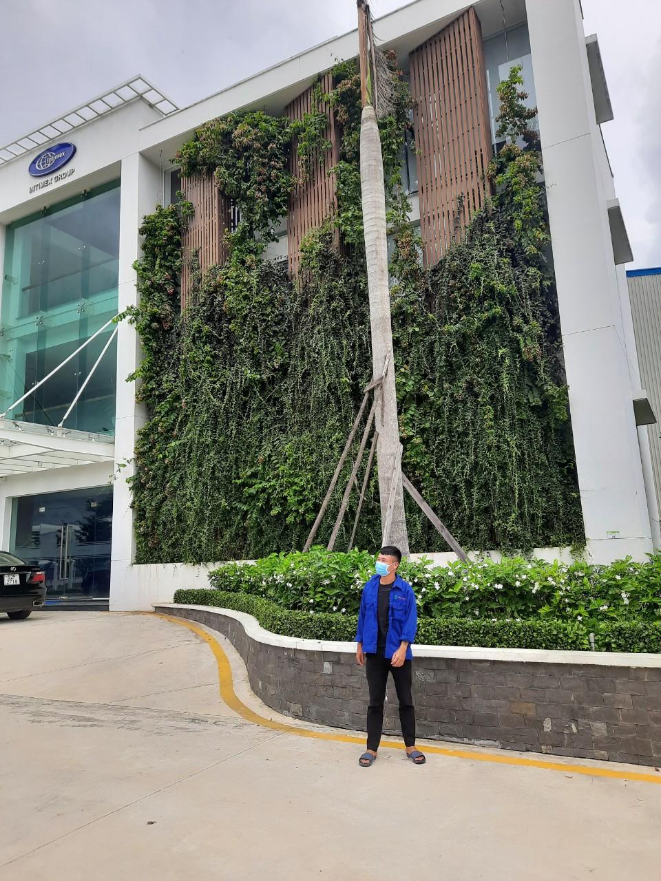 Nhân viên An Khang làm việc tại Intimex Bình Dương