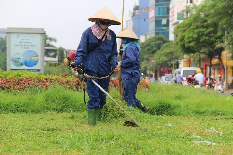 Nhân viên An Khang thực hiện cắt cỏ