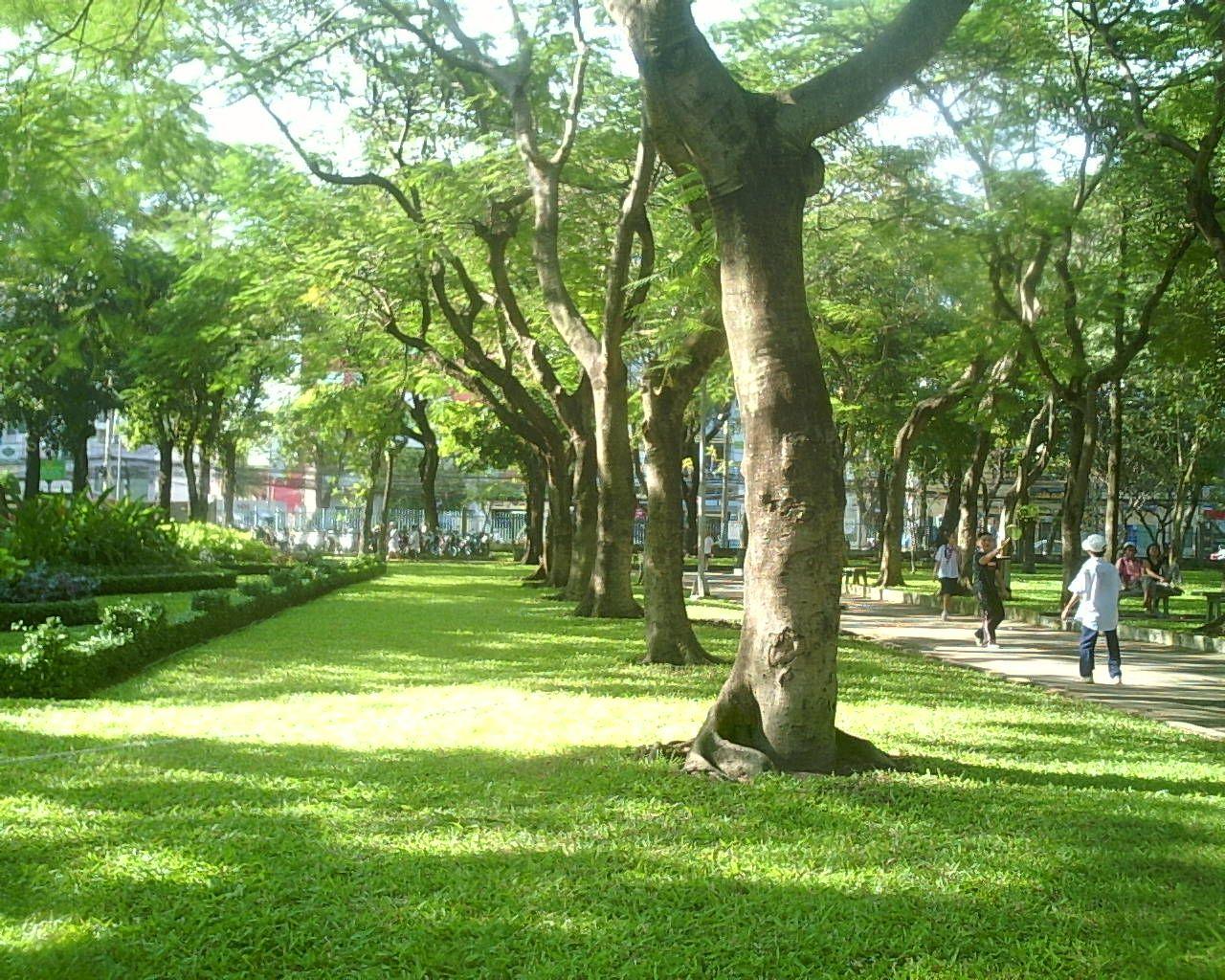 Dịch vụ tồng cỏ tại KCN Bà Rịa Vũng Tàu