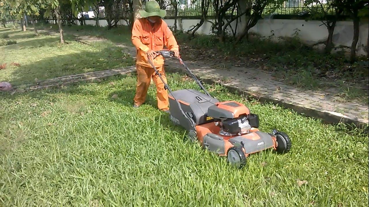 Dịch vụ cắt cỏ khu công nghiệp Tiền Giang chuyên nghiệp