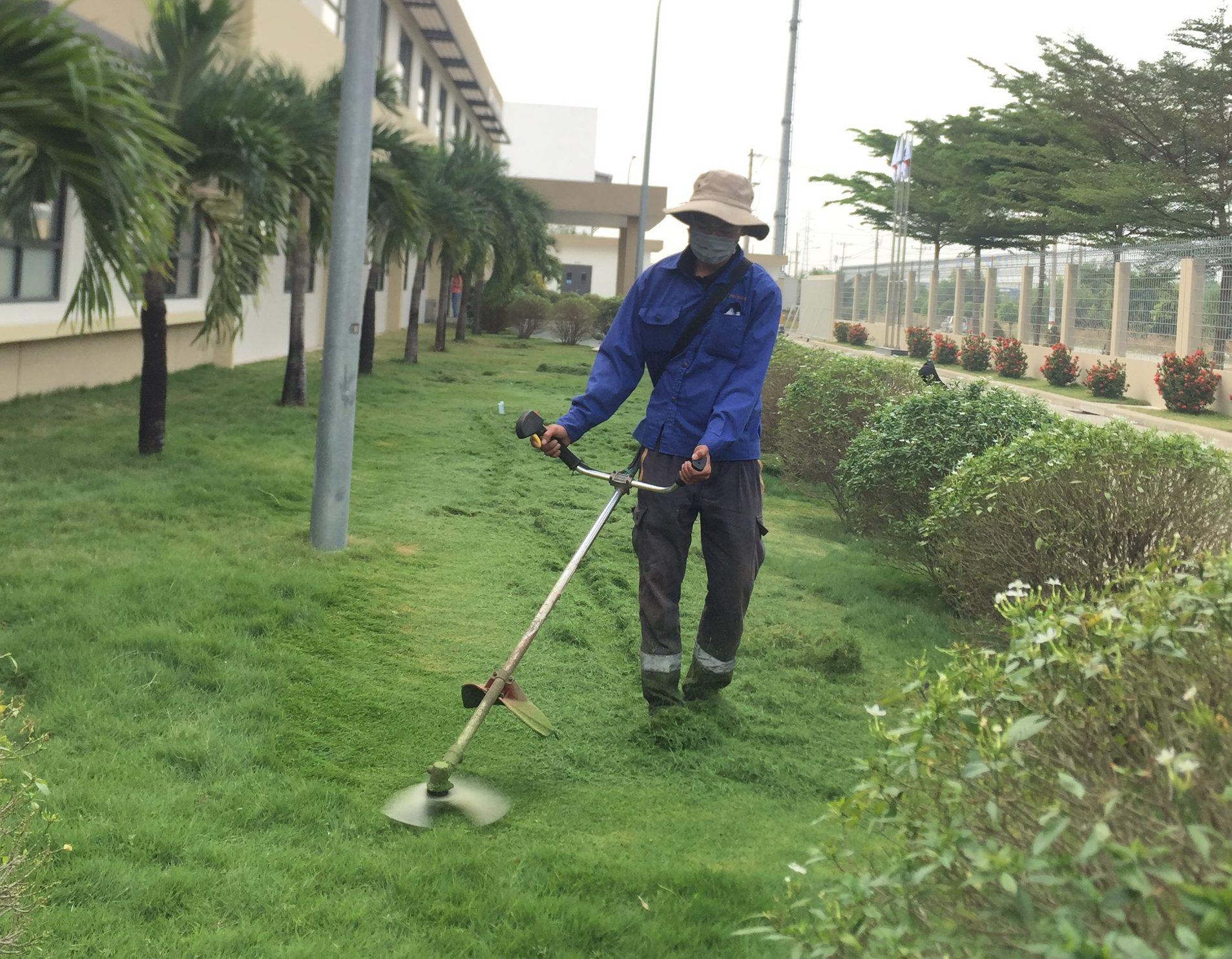 Đơn vị cắt cỏ khu công nghiệp Tân Đông Hiệp - An Khang