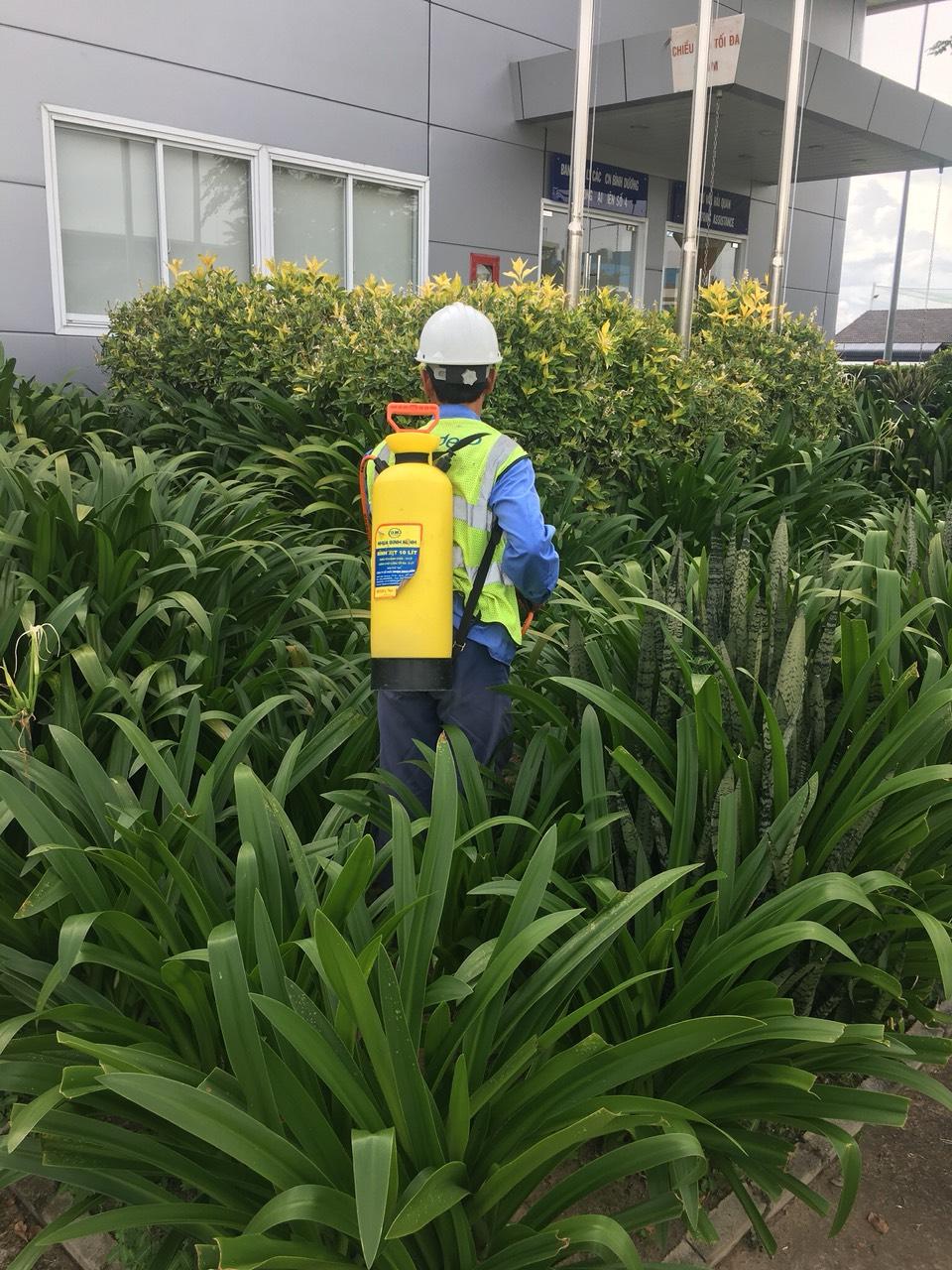 Chăm sóc cảnh quan xanh tại khu công nghiệp Bình Dương trọn gói.