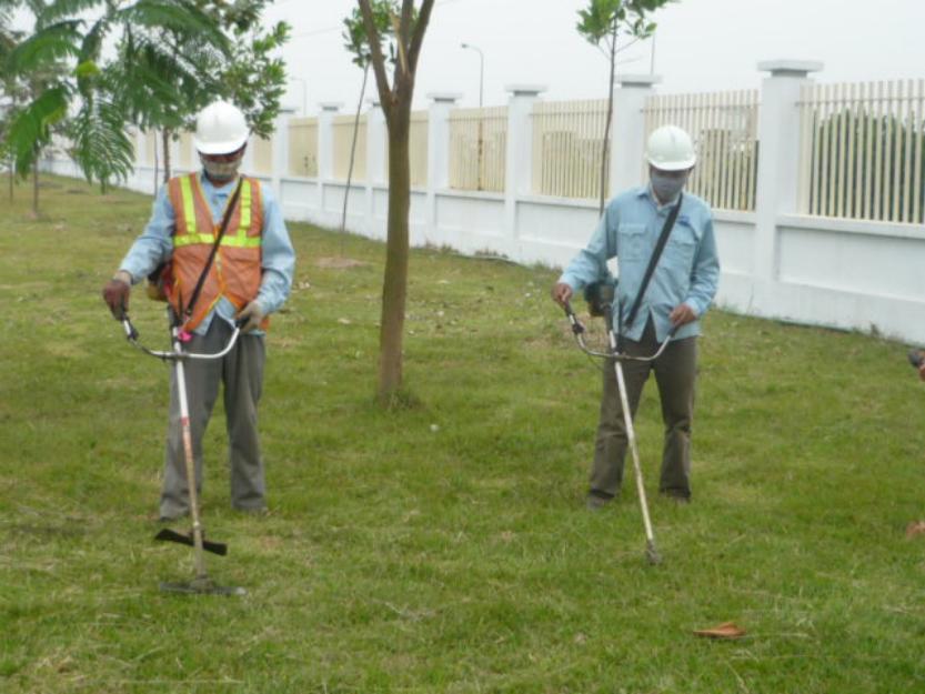 cắt cỏ tại KCN Dệt May Bình An