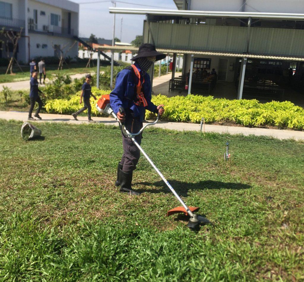 Đơn vị cắt cỏ KCN Tân Đông Hiệp Bình Dương