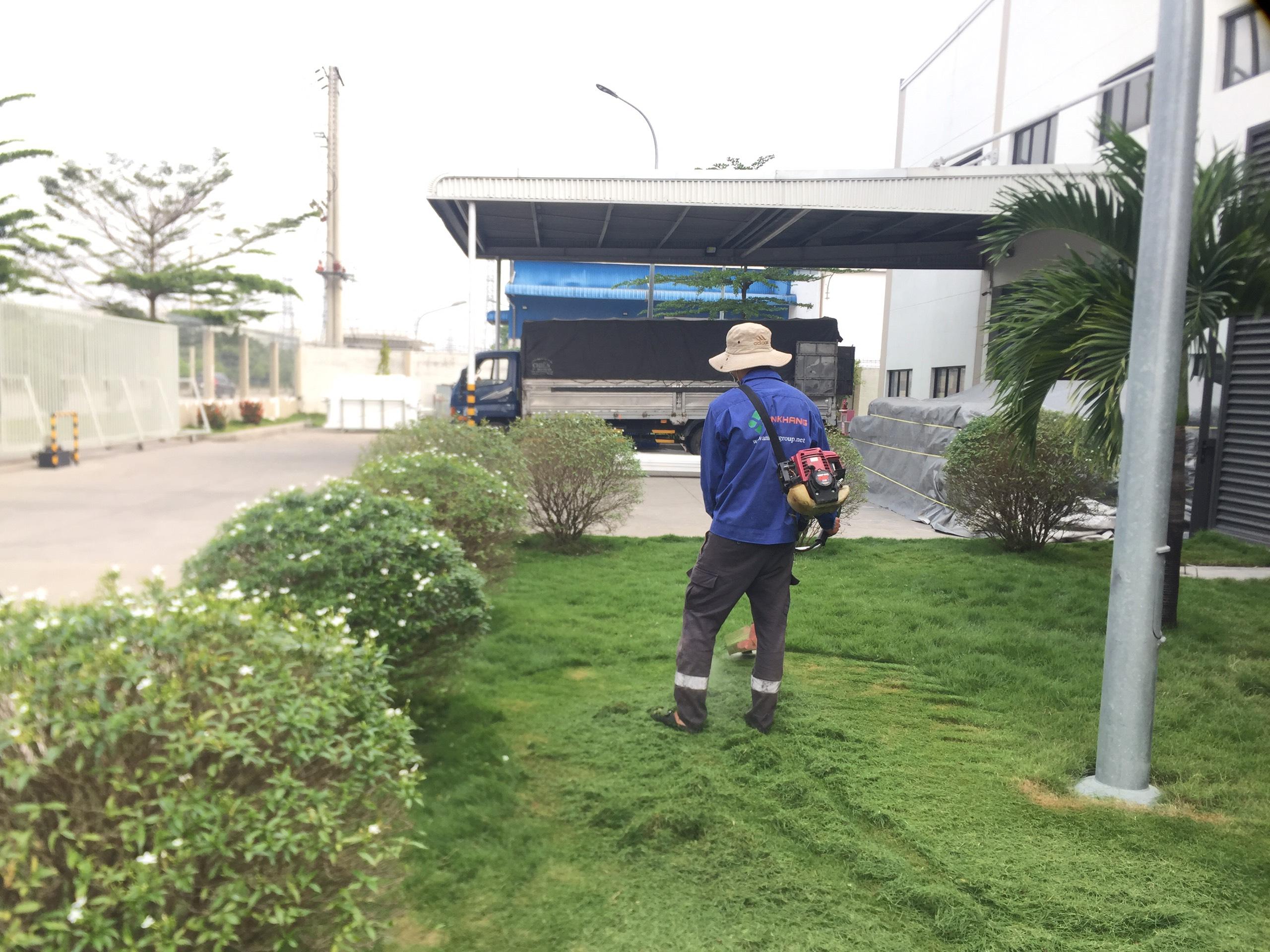 Dịch vụ cắt cỏ KCN Đại Đăng Bình Dương