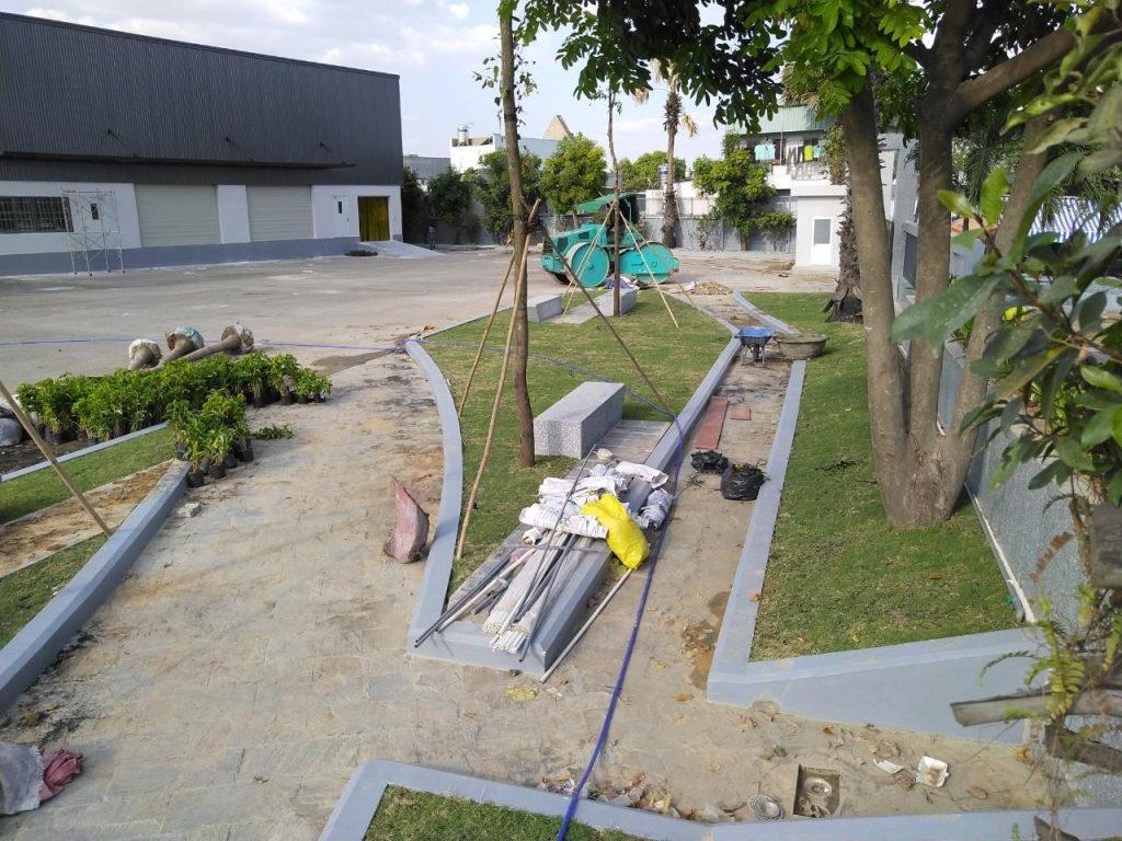 Dịch vụ trồng cỏ và trồng cây xanh cho khu công nghiệp Bình Dương
