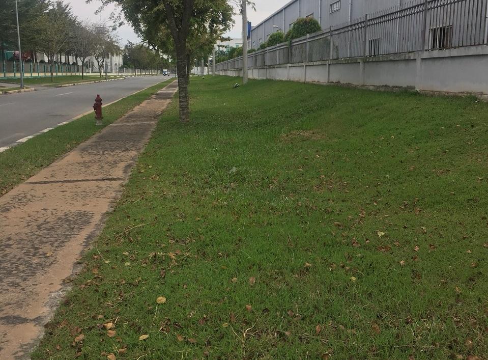 Dịch vụ cắt cỏ tại KCN Kim Huy Bình Dương