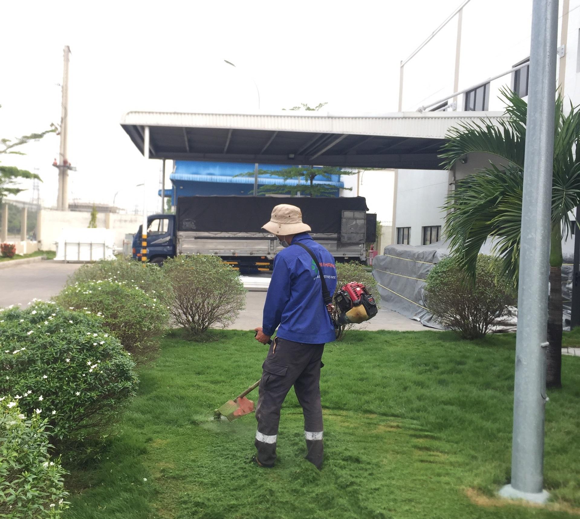 Dịch vụ phát hoang cỏ dại khu công nghiệp Mỹ Phước 3
