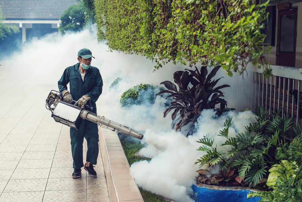 Dịch vụ phun thuốc diệt côn trùng tại nhà ở Bình Dương