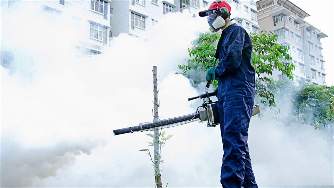 Công ty dịch vụ diệt côn trùng tại Bình Dương