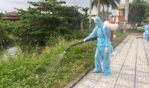 Dịch vụ diệt côn trùng tại KCN Việt Hương Bình Dương