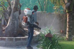 Công ty cung cấp dịch vụ diệt côn trùng tại Bình Dương