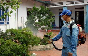 Dịch vụ phun thuốc diệt muỗi tại nhà ở Bình Dương